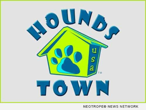 pet care industry