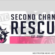 Second Chance NYC